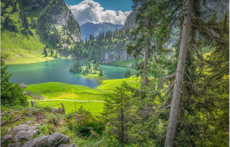 Фото обои озеро, остров, Швейцария, Хинтерштоккен