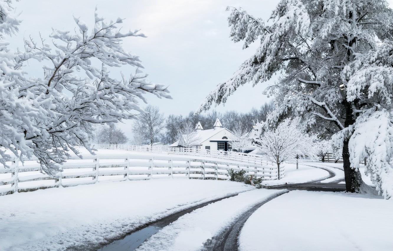 Фото обои зима, дорога, снег, дом, забор