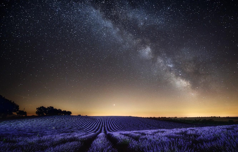картинки ночью в поле звезд благодать все веры ему