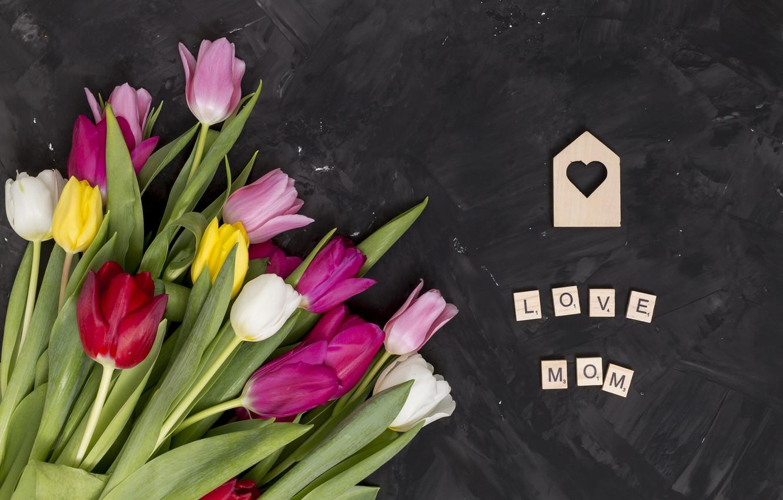 Фото обои цветы, colorful, тюльпаны, розовые, pink, flowers, tulips, spring, purple, mother's day