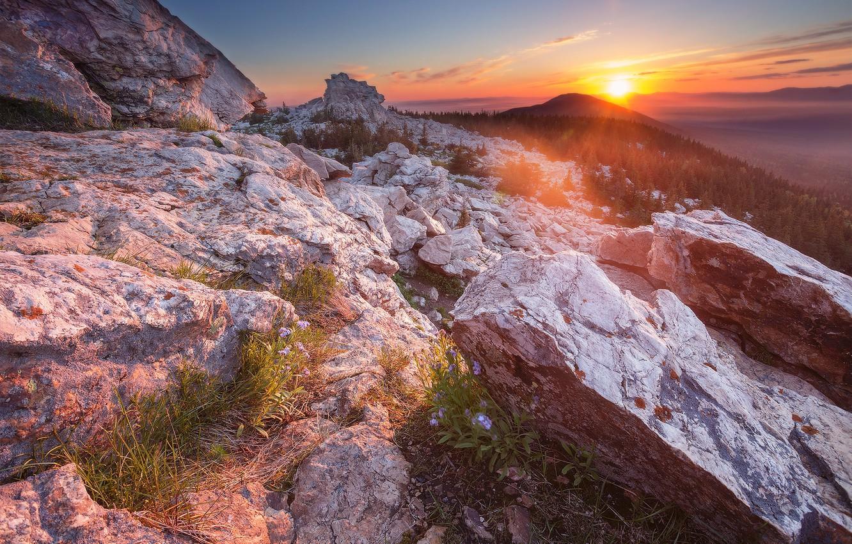 Фото обои лес, небо, солнце, лучи, закат, горы, камни, скалы, высота, вечер