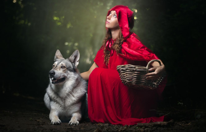 Фото обои девушка, собака, капюшон, плащ, корзинка, Красная Шапочка и Серый Волк