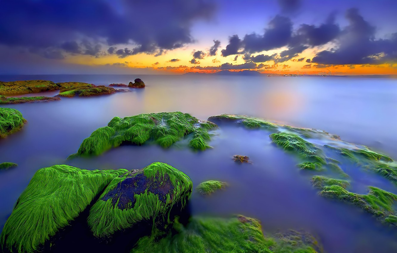 Фото обои rock, sea, sunset, moss