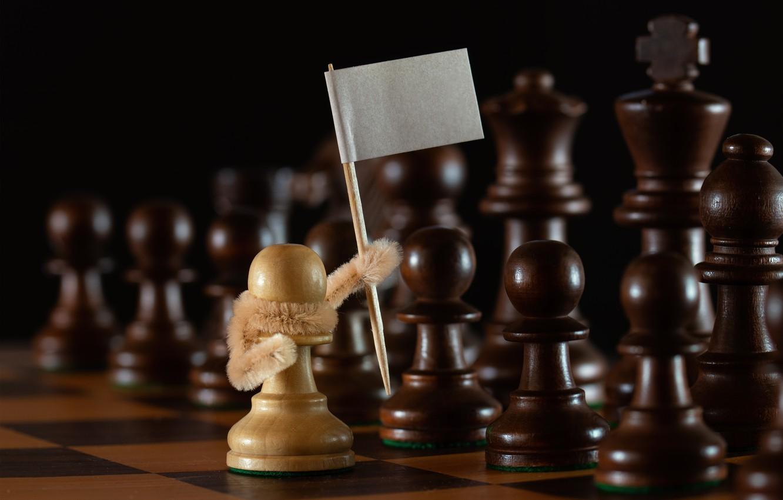Фото обои шахматы, пешки, белый флаг, капитуляция, белая пешка, Сдаёмсу!