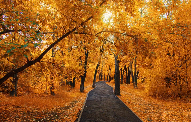 Фото обои парк, прогулки, золотая осень, темиртау