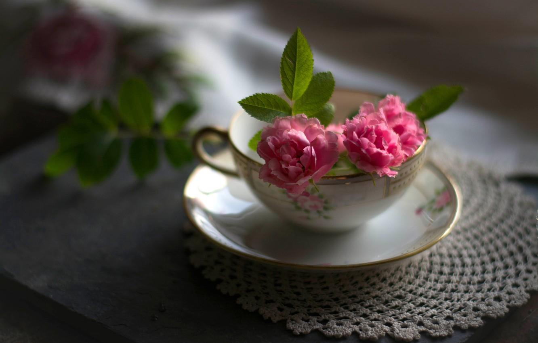 Обои цветы, натюрморт, сервиз, тарелка, стол. Разное foto 14
