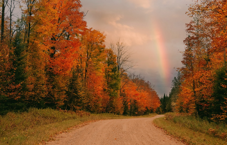 Фото обои дорога, осень, радуга