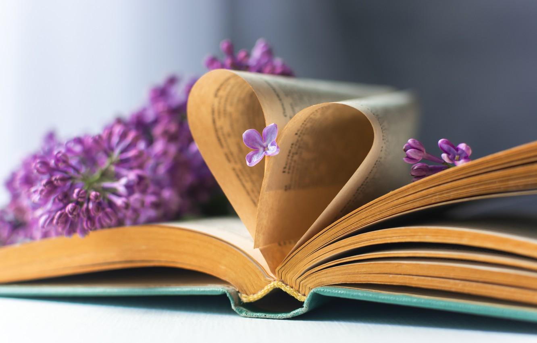 Фото обои книга, цветки, страницы, сирень