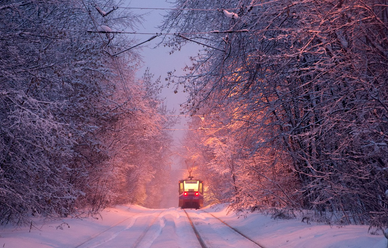 Фото обои зима, трамвай, winter, tram, Алексей Харитонов
