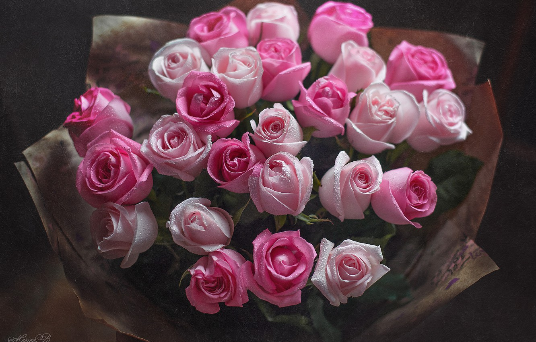 Фото обои капли, розы, букет, розовые, бутоны, Marina Baccardi