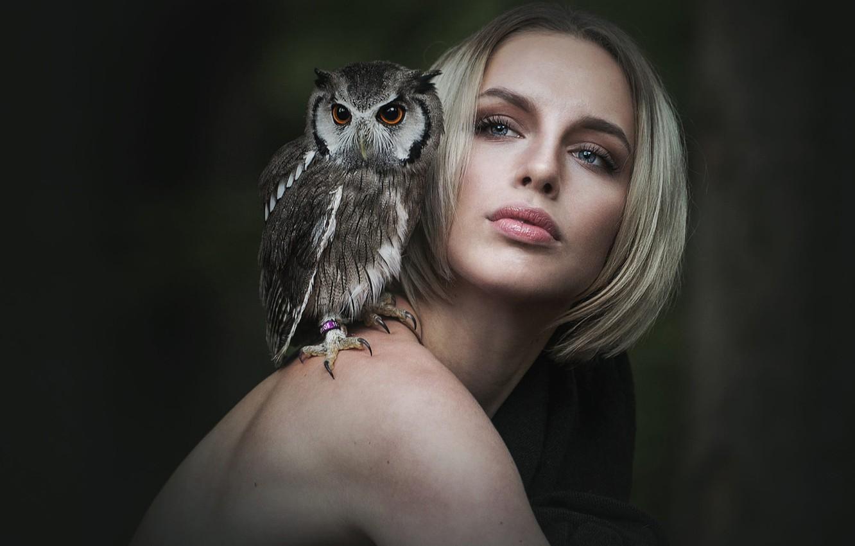 день авторского взгляд на птиц глазами фотографа напитков закусок