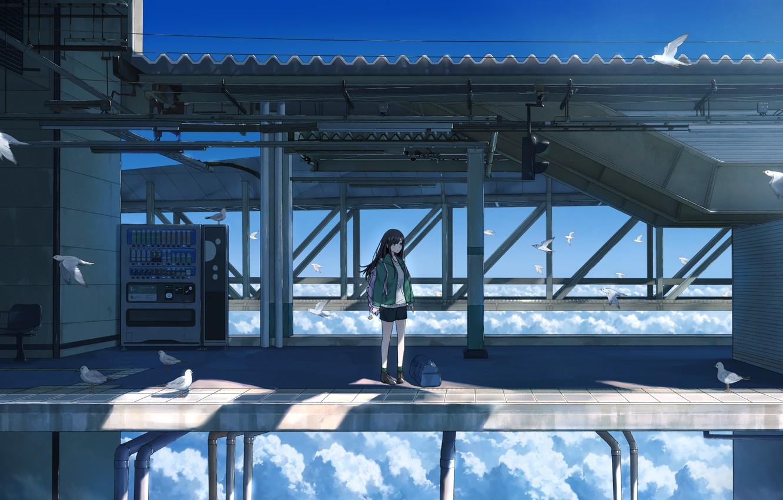 Фото обои девушка, облака, мост, высота