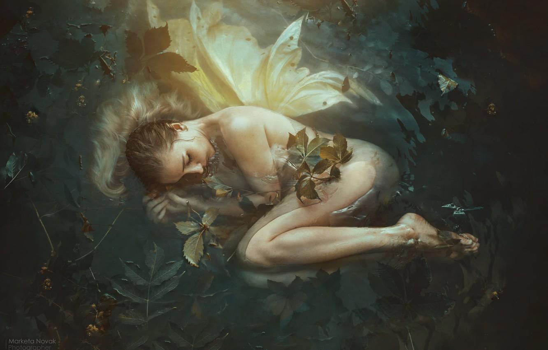 Фото обои листья, вода, девушка, поза, настроение, сон, ситуация, фея, крылышки, спящая, Marketa Novak, Simona Bubnik
