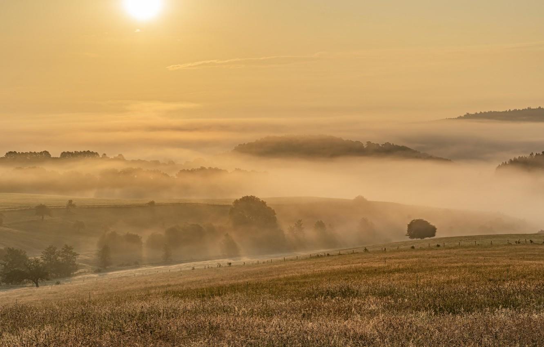 Фото обои поле, закат, туман