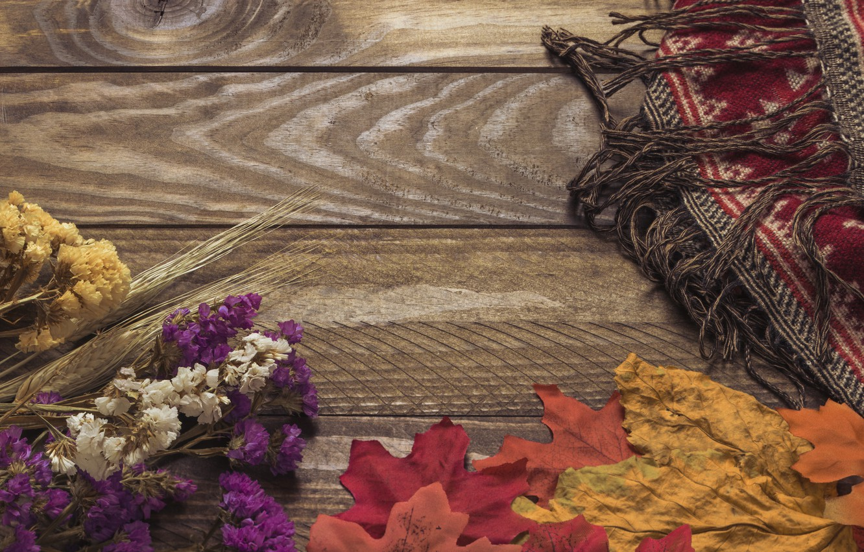 Фото обои осень, листья, цветы, фон, дерево, colorful, wood, background, autumn, leaves, осенние, maple