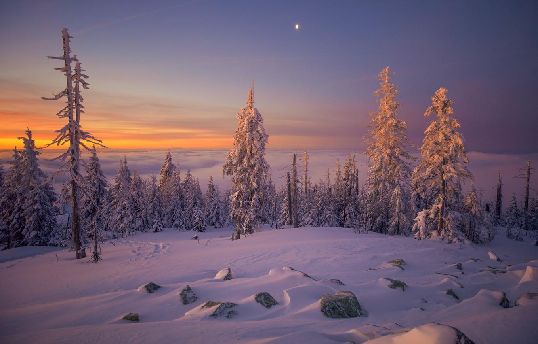 Фото обои зима, закат, природа