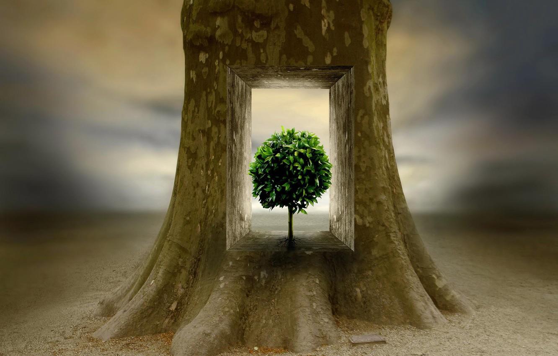 Фото обои дерево, tree, inner world, внутренний мир, Ben Goossens