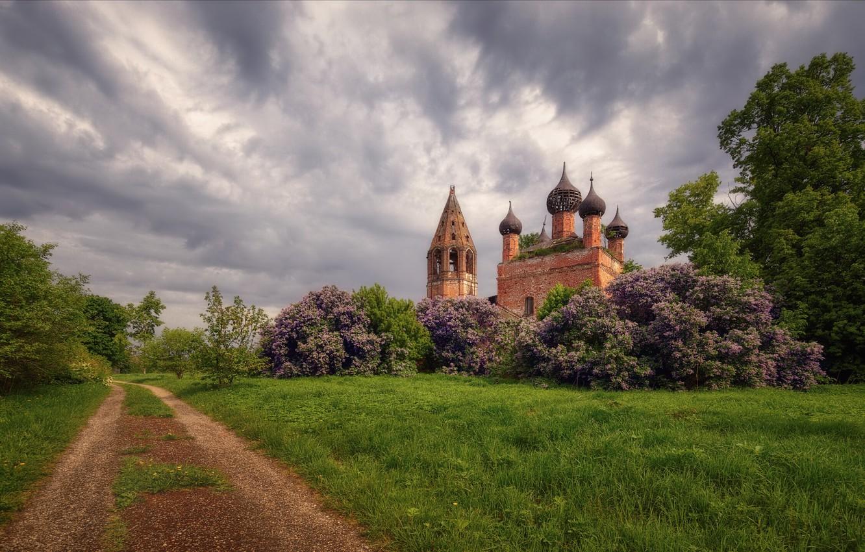 Фото обои дорога, небо, пейзаж, тучи, природа, башня, весна, церковь, кусты, сирень, купола, Богорянов Алексей