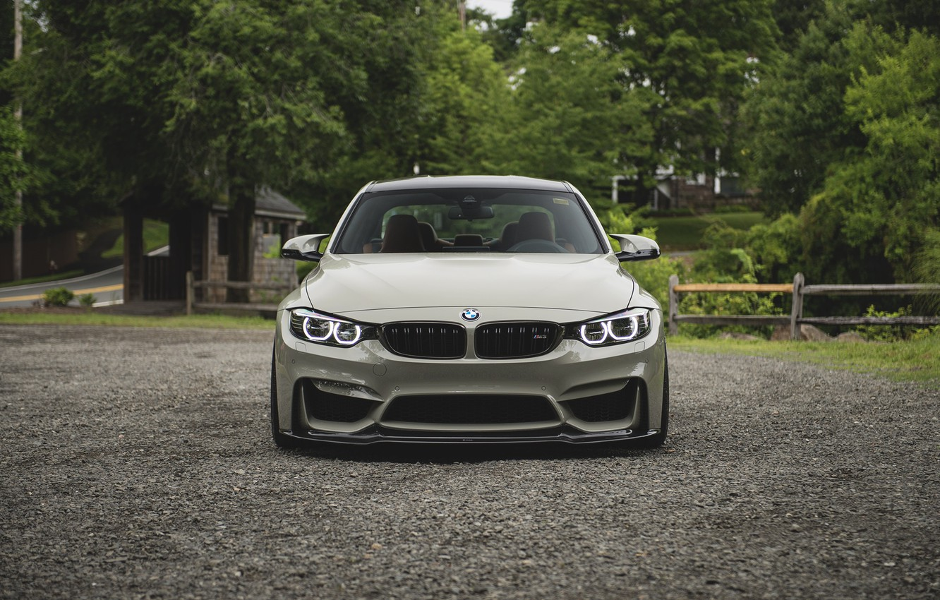 Фото обои BMW, Front, Face, F82, Forest