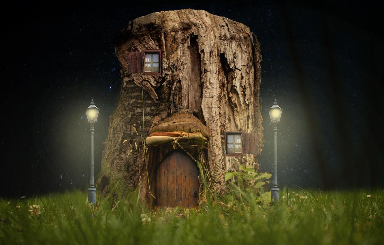 Фото обои трава, ночь, пень, фонари, домик