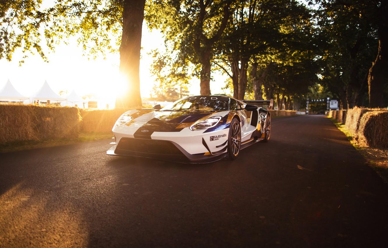 Фото обои Ford, Деревья, Ford GT, спорткар, Mk II
