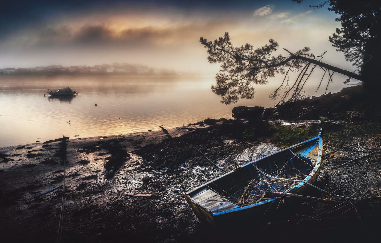 Фото обои ночь, туман, река, лодка