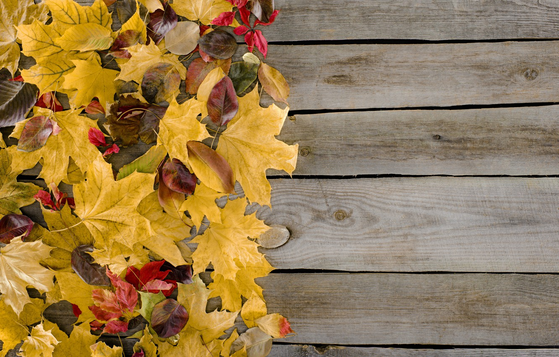 Фото обои осень, листья, фон, дерево, доски, colorful, wood, background, autumn, leaves, осенние