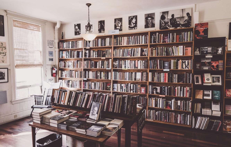 Фото обои книги, окно, полка, библиотека, портреты, patrick brinksma
