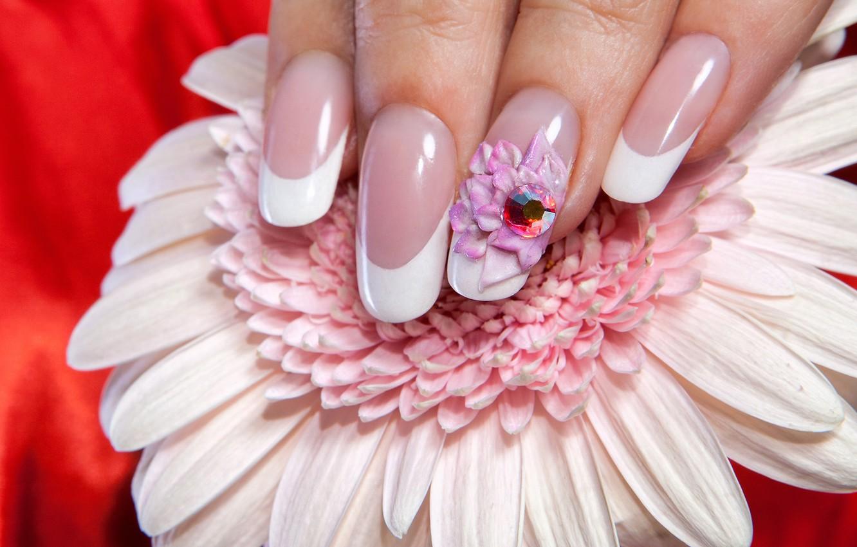 Фото обои белый, цветок, макро, красный, фон, пальцы, украшение, ногти, боке, маникюр, гербер