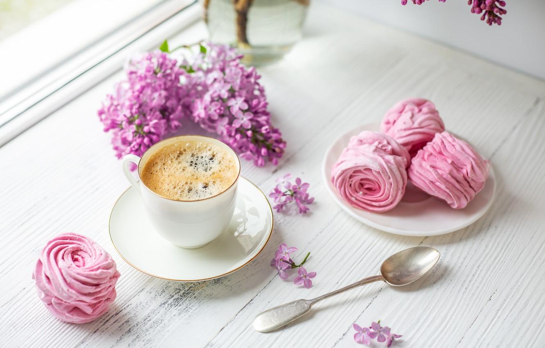 красивые картинки нежные пионы завтрак проблемы
