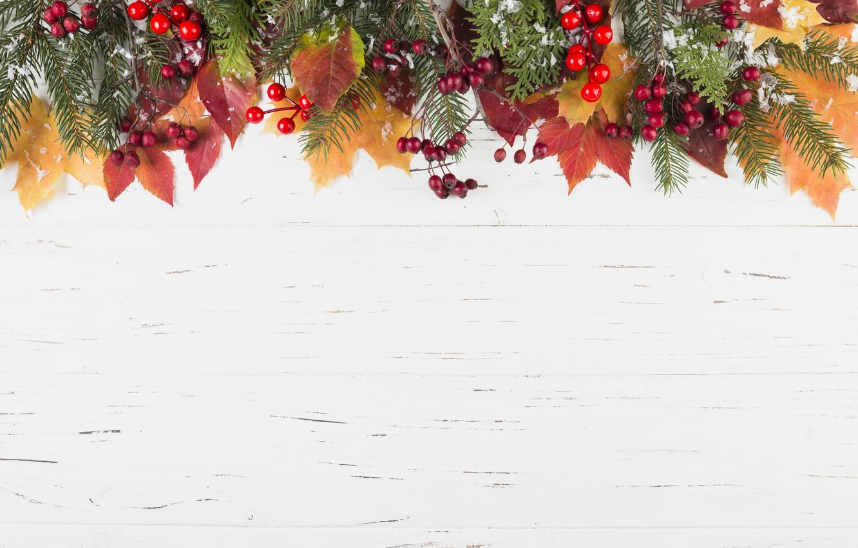 Фото обои зима, листья, снег, ягоды, фон, colorful, клен, wood, winter, autumn, snow, leaves, осенние, berries, maple, …