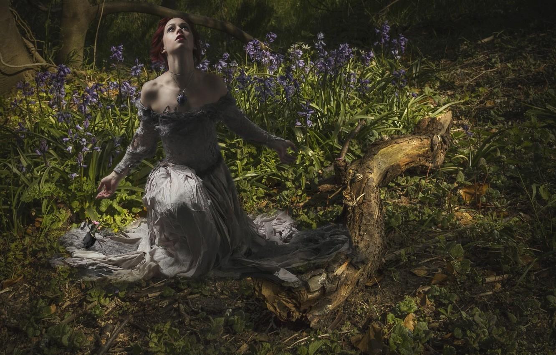 Фото обои лес, девушка, цветы, бревно