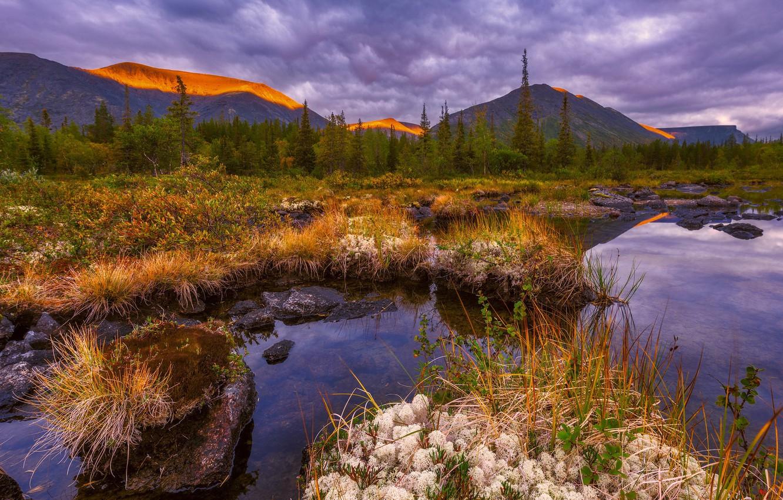 Фото обои вода, горы, тучи, сухая трава