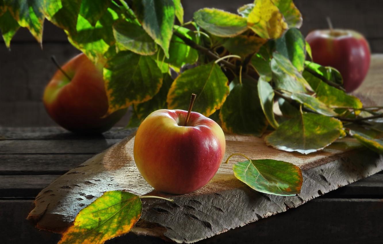 Фото обои листья, яблоки, доски, ветка, фрукты, Сергей Фунтовой