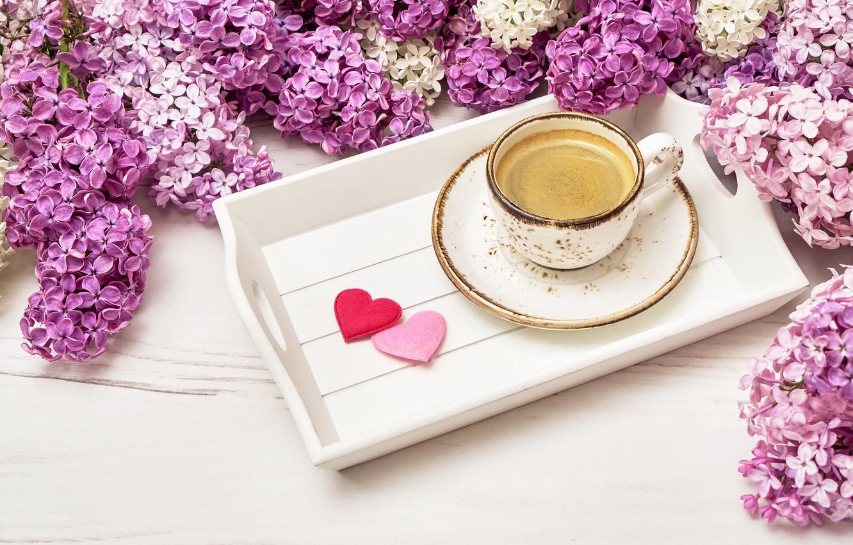 Фото обои цветы, flowers, сирень, romantic, hearts, coffee cup, lilac, чашка кофе