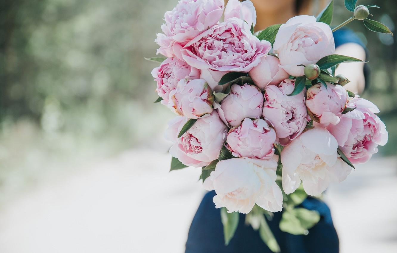 Обои цветы, блюдце, пионы. Разное foto 16