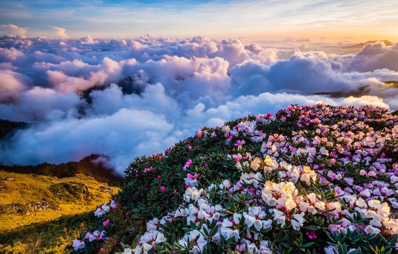 Обои красота, Облака. Природа foto 13