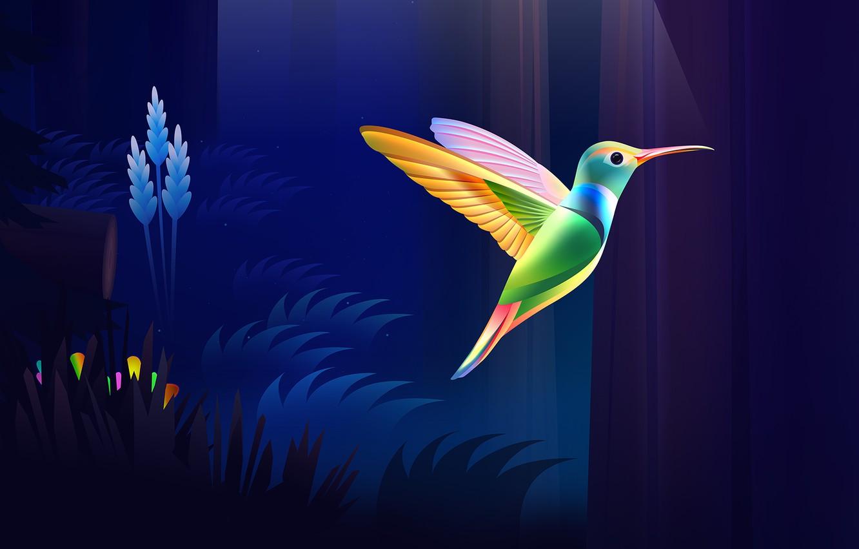 Фото обои colorful, dark, nature, bird, wood, wings, rendering, Colibri