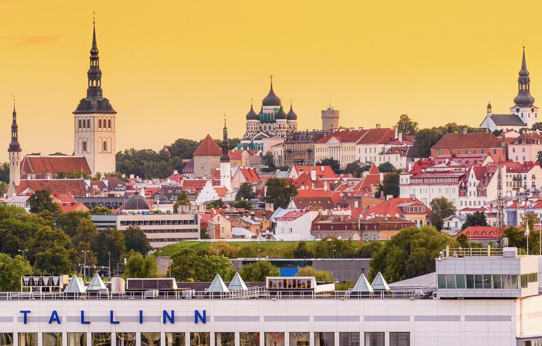 Фото обои здания, крыши, Эстония, Таллин, панорама