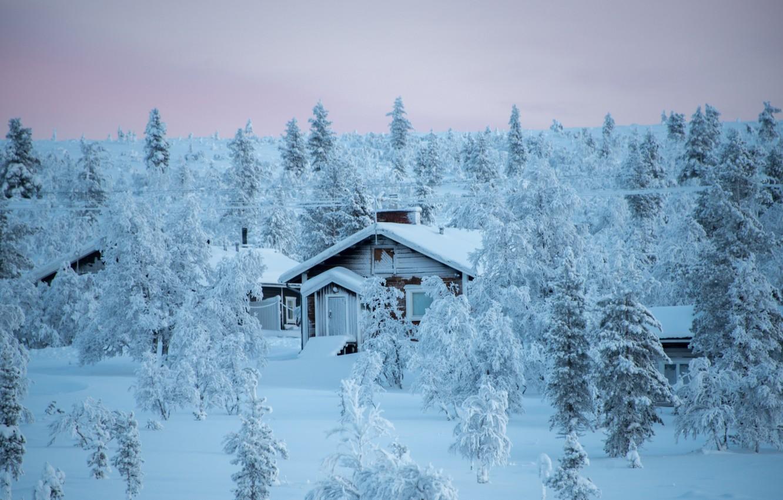 Фото обои зима, лес, снег, деревья, пейзаж, природа, дома, Финляндия, Лапландия