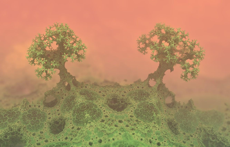 Фото обои абстракция, дерево, узор, микро