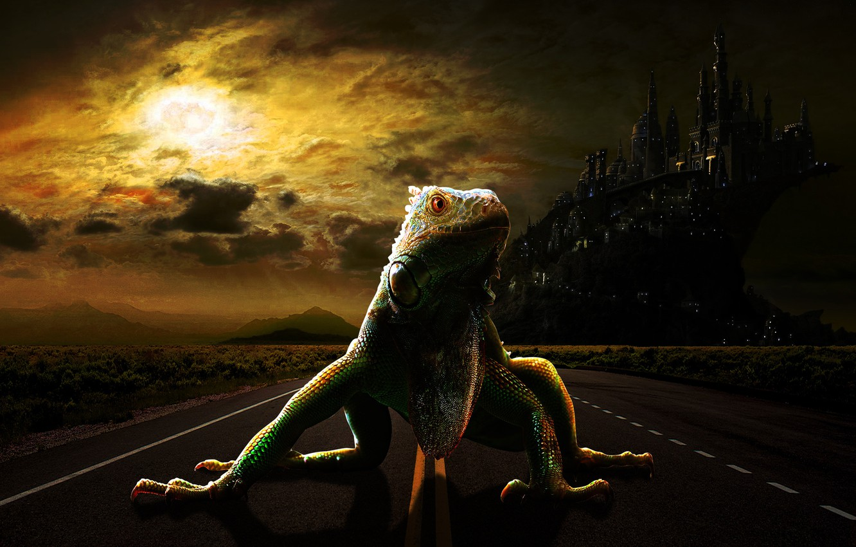 Фото обои дорога, город, ящерица, ящер, фэнтази