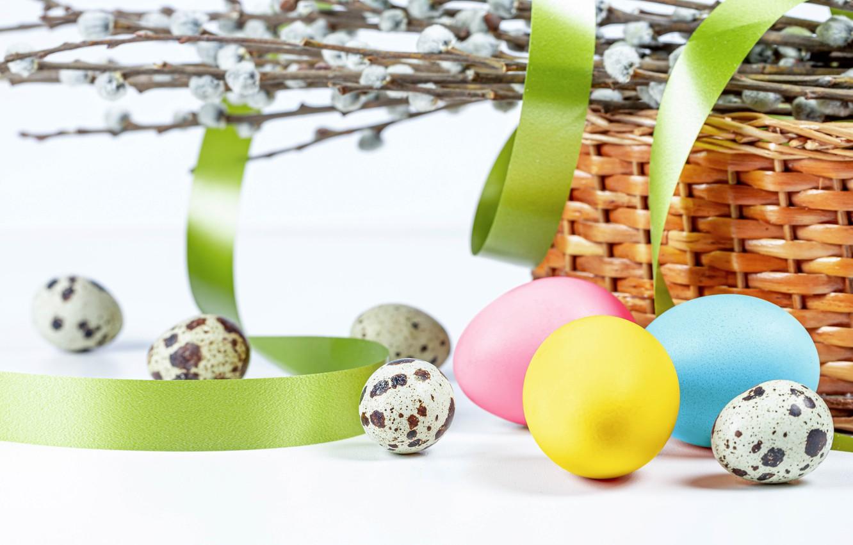 Фото обои ветки, корзина, яйца, Пасха, лента, белый фон, верба, крашенки