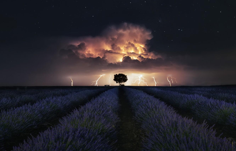 Фото обои гроза, звезды, stars, лаванда, lavender, thunderstorm, Ces@r