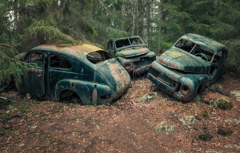 Обои машины, лом. Автомобили foto 12