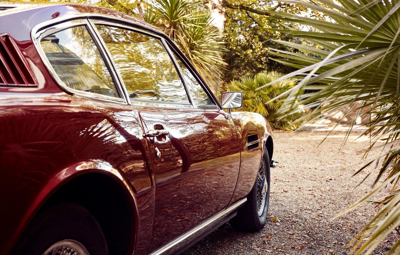 Фото обои пальма, колесо, зеркало, автомобиль, Christoffer Rudquist, Aston Martin DB