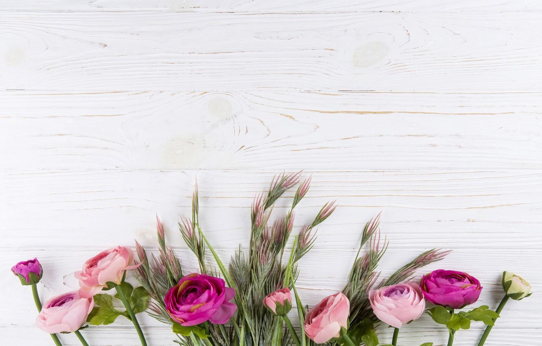 Фото обои цветы, фон, доски, розы, поздравления, открытка, заготовка