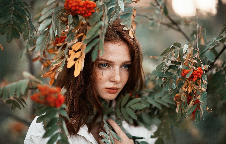 Фото обои взгляд, листья, девушка, ветки, лицо, ягоды, портрет, веснушки, рыжая, рябина, конопатая, Олег Коваленко