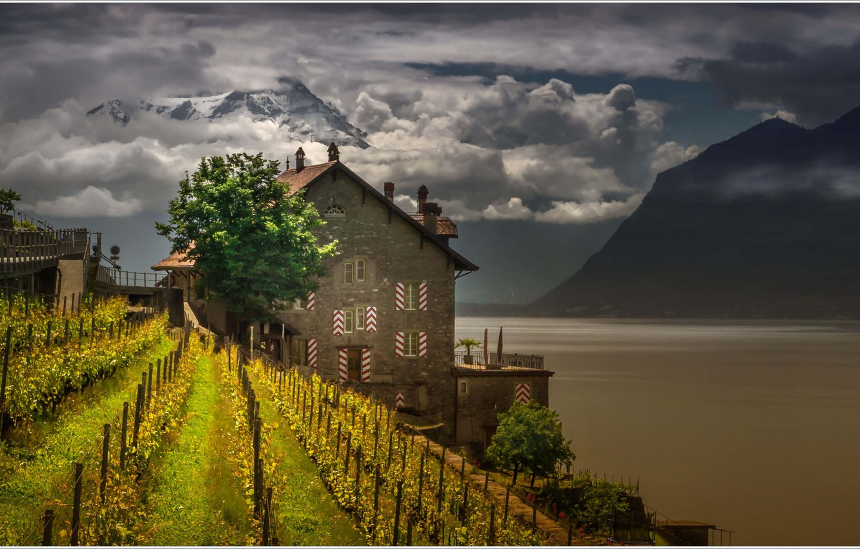 Фото обои горы, озеро, дом, Швейцария, виноградник