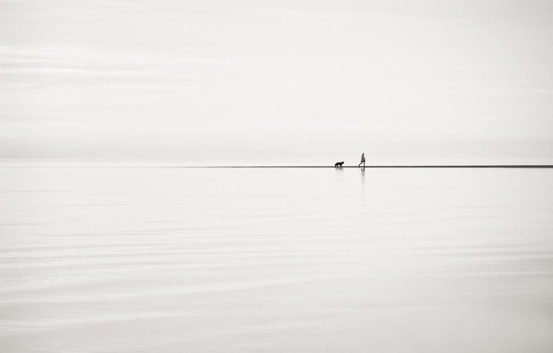 Фото обои человек, собака, прогулка